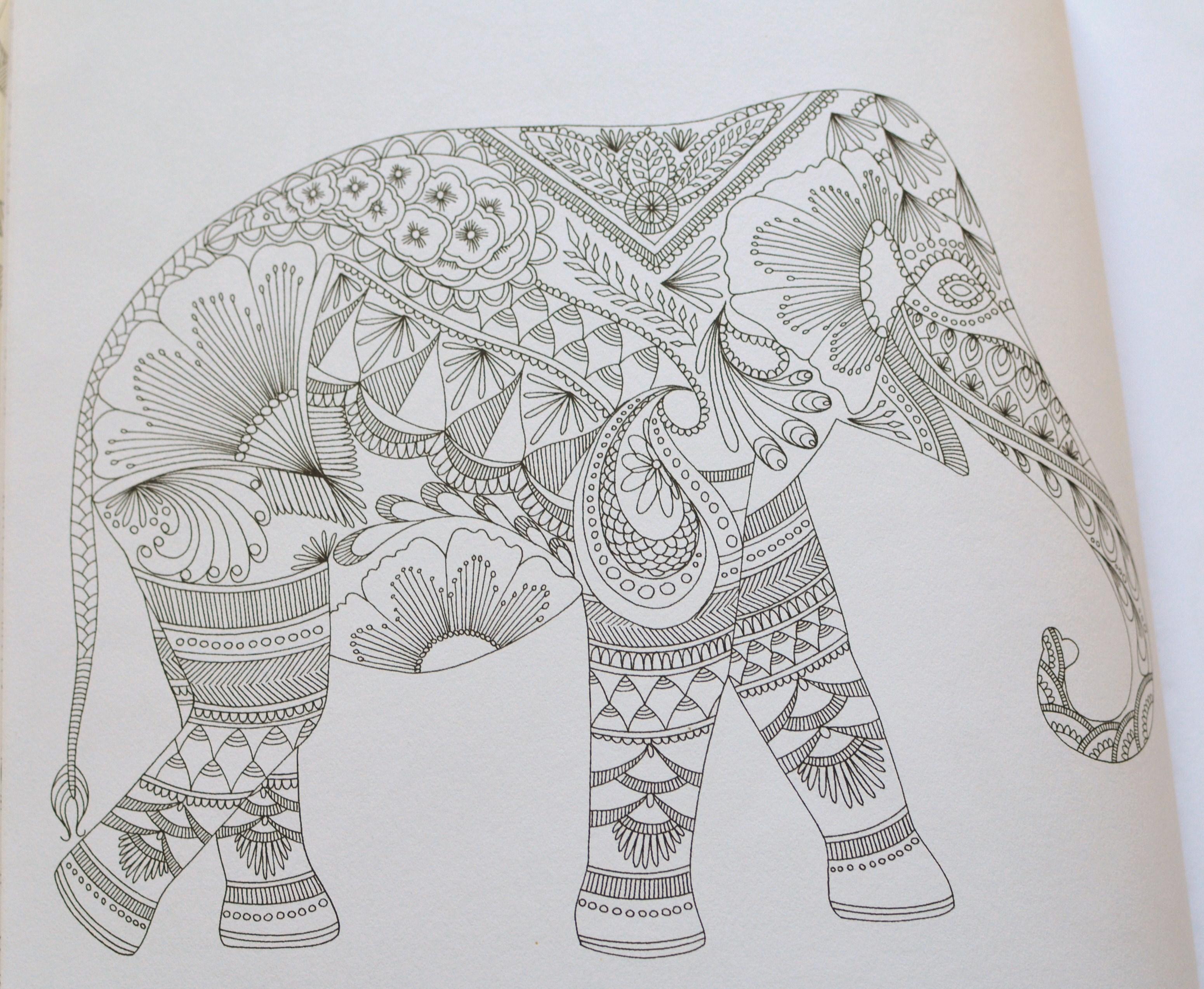 Livre de coloriage pour adultes animaux fantastiques - Coloriages adultes ...