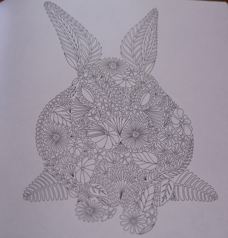 Livre de coloriage pour adultes animaux fantastiques - Dessin animaux fantastiques ...