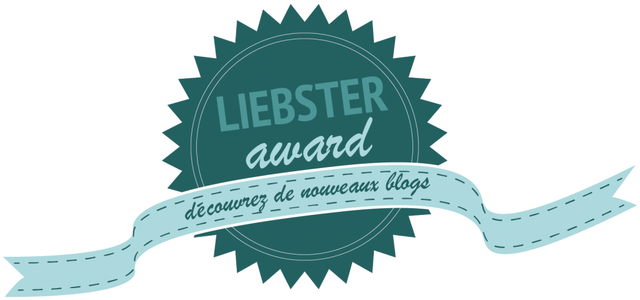 logo_liebster-award-1-1024x480