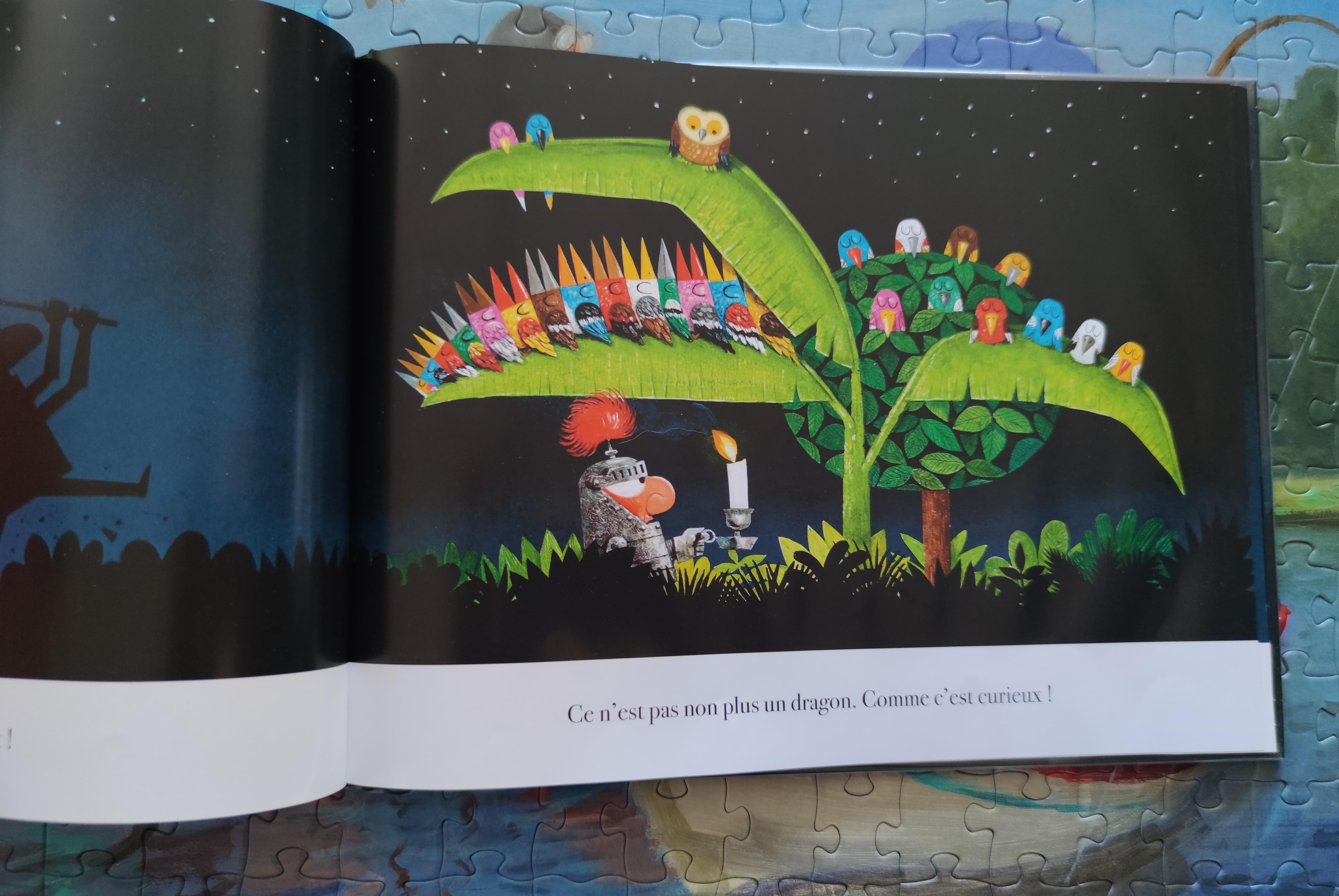 Où est le dragon ?, Leo Timmers illustrations